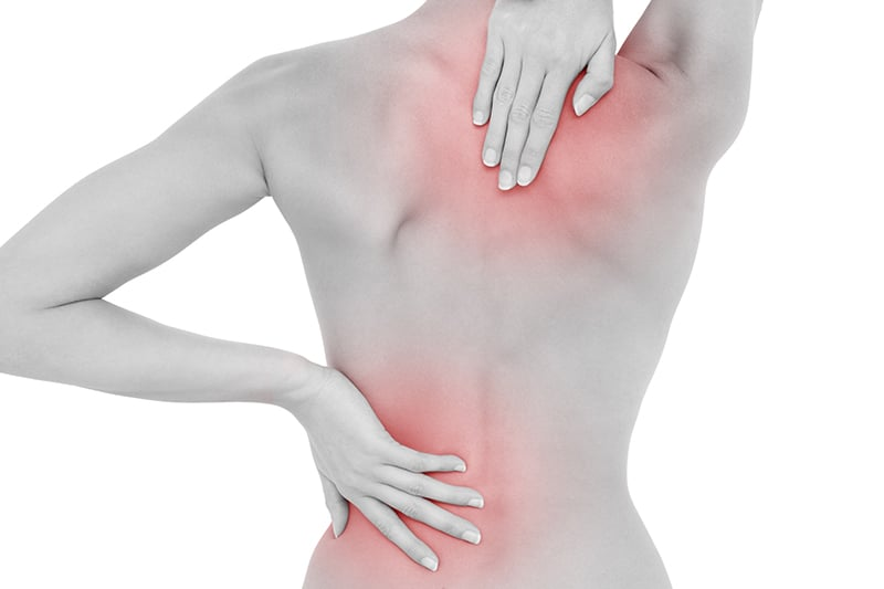 Lumbar Spine Anatomy | Physicaltherapynow.com