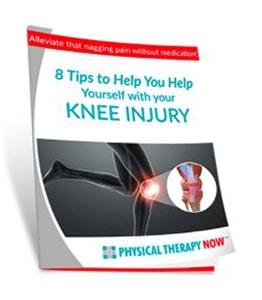 Knee Pain Book